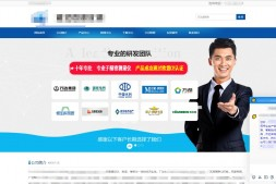 营销型-仪表行业营销型网站群